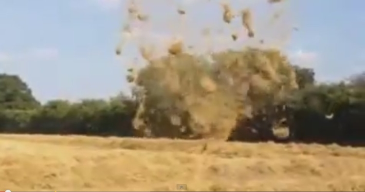 Amazing Hay vortex whips into field in Hampshire