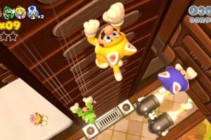 Mario 3D world 26