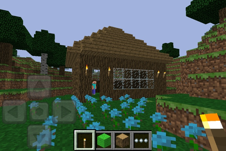 Gold mines and night/day options coming to Minecraft Pocket Edition